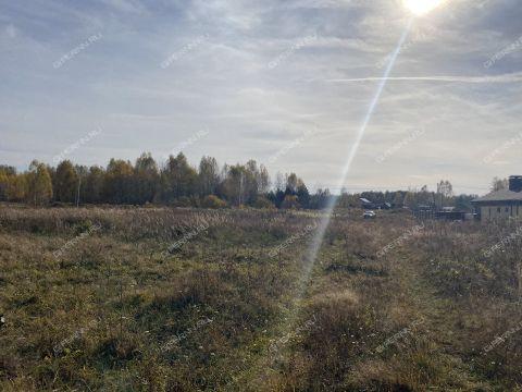 derevnya-putkovo-gorodskoy-okrug-bor фото