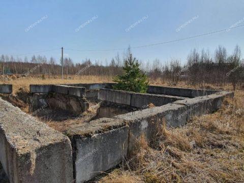 dom-selo-sheloksha-kstovskiy-rayon фото