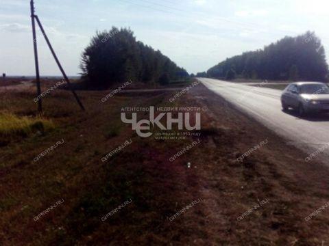 derevnya-tamaevka-arzamasskiy-rayon фото