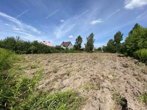 derevnya-vladimirovo-gorodskoy-okrug-bor фото