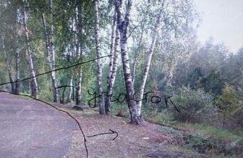gorod-zavolzhe-gorodeckiy-rayon фото