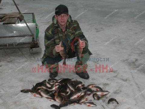 dom-rabochiy-poselok-vasilsursk-vorotynskiy-rayon фото