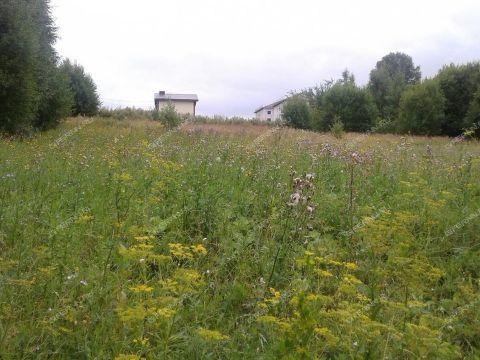 selo-doskino-bogorodskiy-municipalnyy-okrug фото